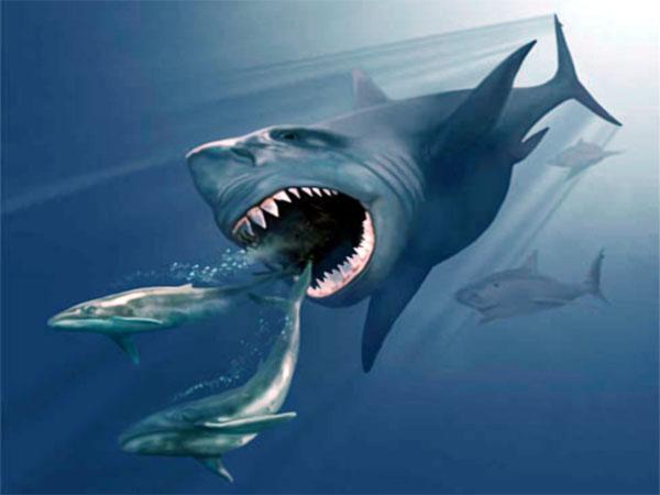 Доисторическая акула Мегаладон