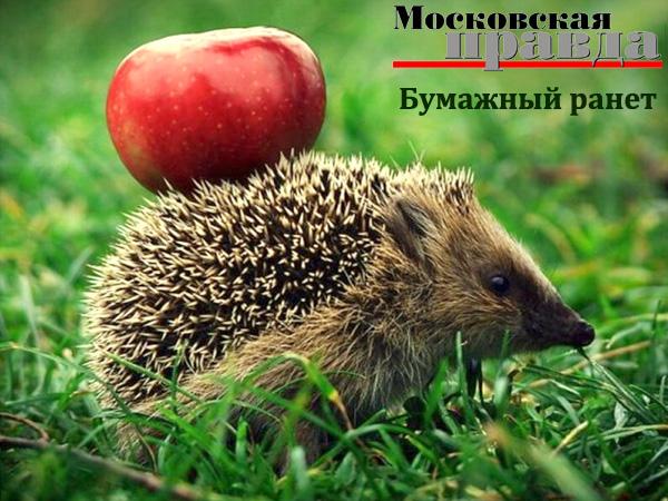 Саша Кругосветов в программе «Бумажный ранет» на радио «Московская правда»